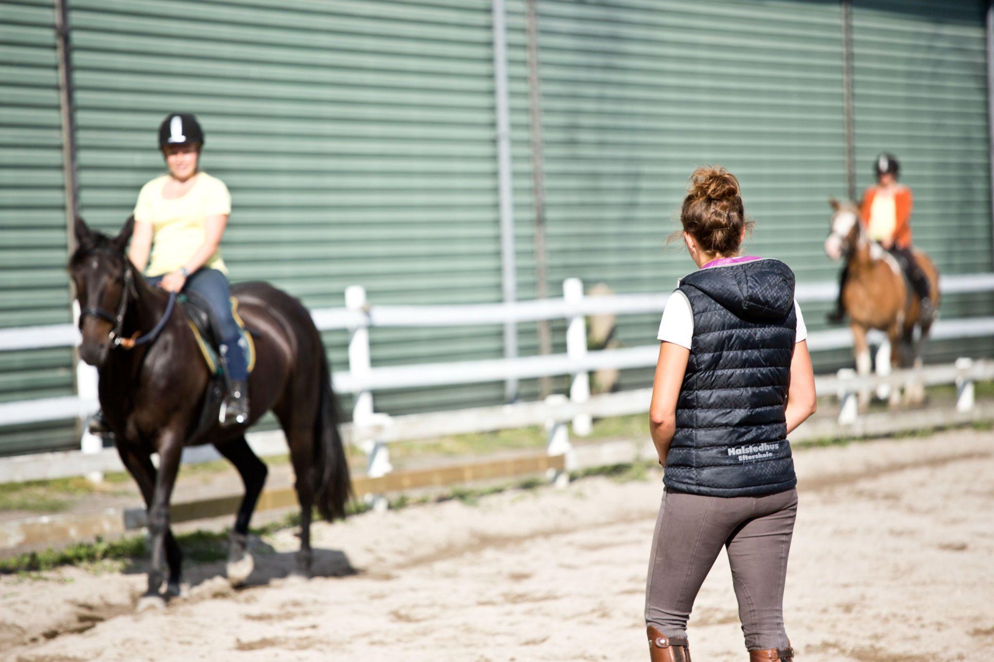 Rideefterskole - efterskole med egen hest