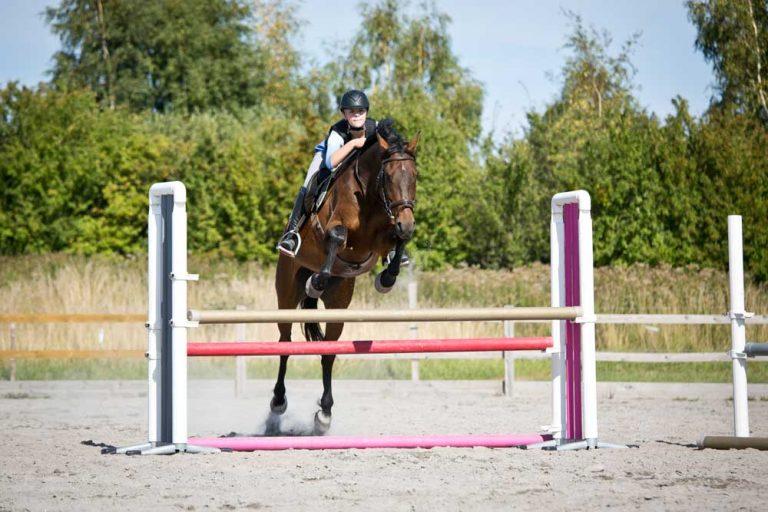 Ride efterskole uden egen hest