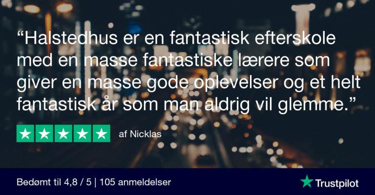 Trustpilot Review - Nicklas